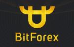 BitForex – обзор характеристик и функциональности биржи